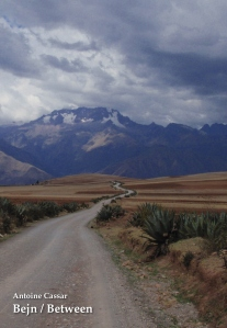 Photograph taken on the way to Maras, Peru, November 2009
